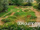 604 Pump Track - one year old