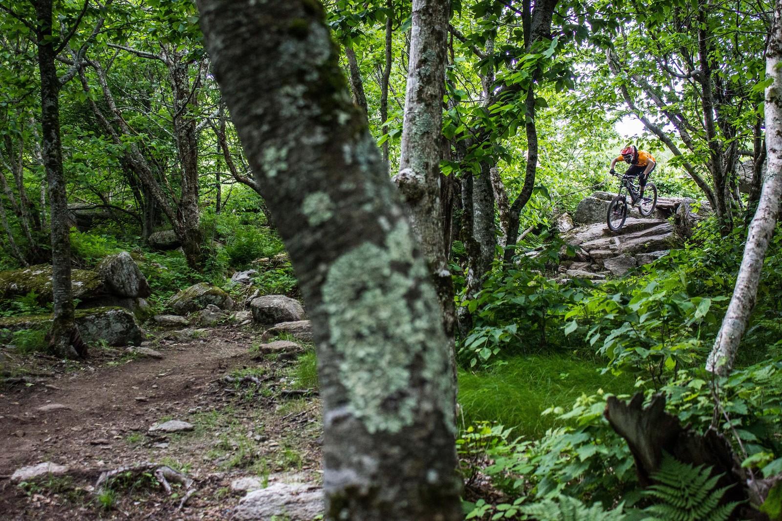 IMG 3424 - mtndrew - Mountain Biking Pictures - Vital MTB