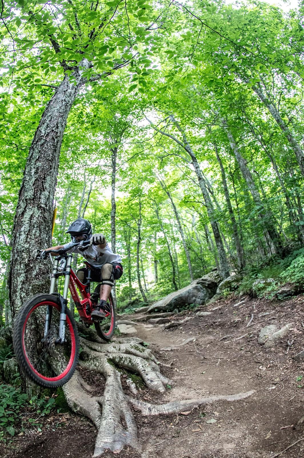 IMG 3847 - mtndrew - Mountain Biking Pictures - Vital MTB