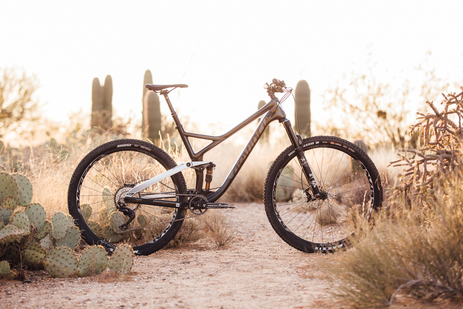 Devinci Django Carbon SLX / XT 29 - 2017 Vital MTB Test Sessions - Devinci Django Carbon SLX / XT 29 - 2017 Vital MTB Test Sessions - Mountain Biking Pictures - Vital MTB
