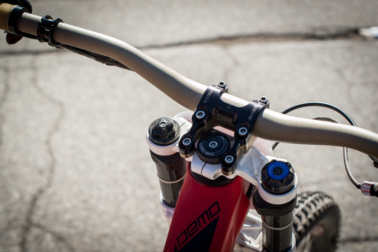 Renthal on Renthal & White BoXXer Crowns - Winning Bike - Mitch Ropelato's Specialized Demo 8 - Mountain Biking Pictures - Vital MTB