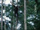 Backwoods Jamming at the Logan Peat Invitational