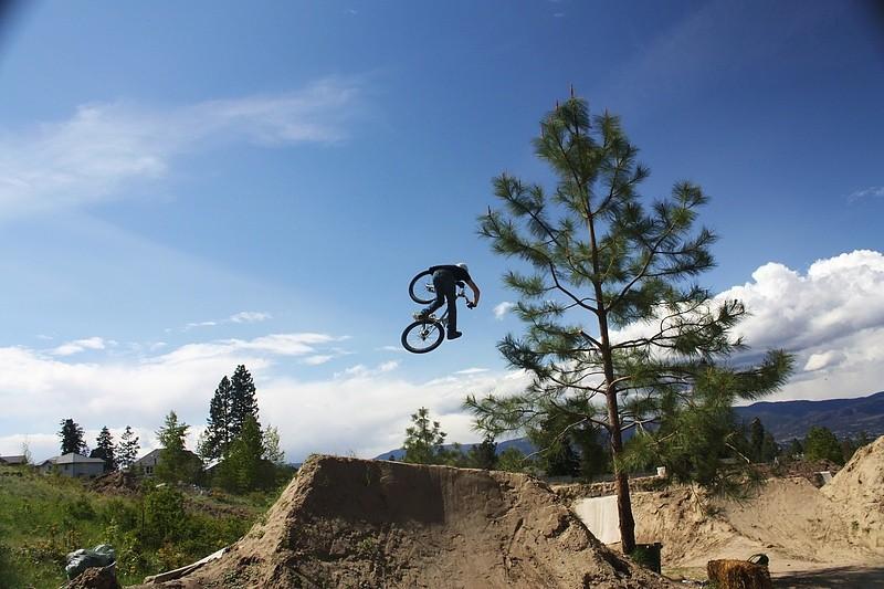 buzzer dreamland - T-Cliff - Mountain Biking Pictures - Vital MTB