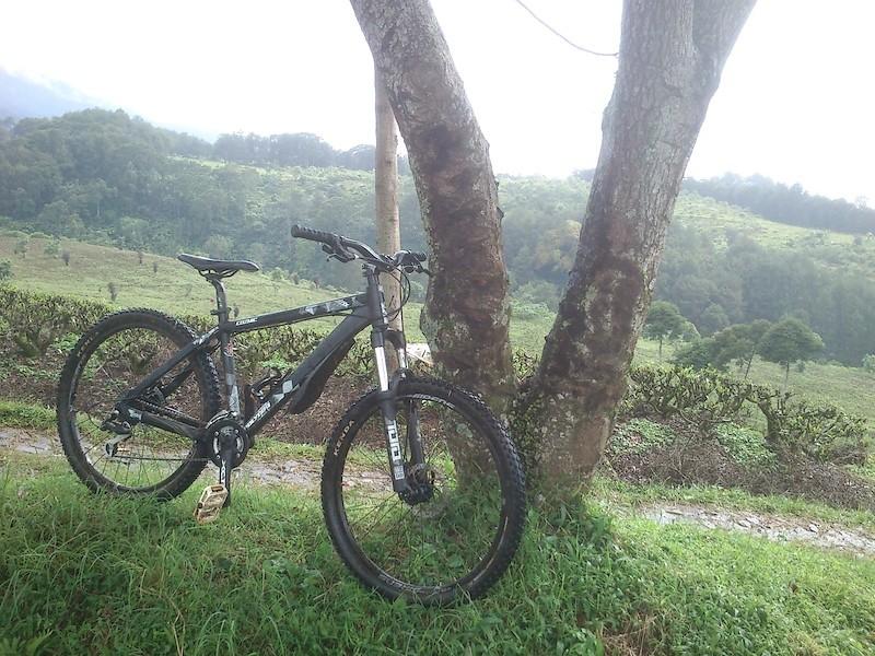 Polygon Cozmic DX1.0 - Trail Bike