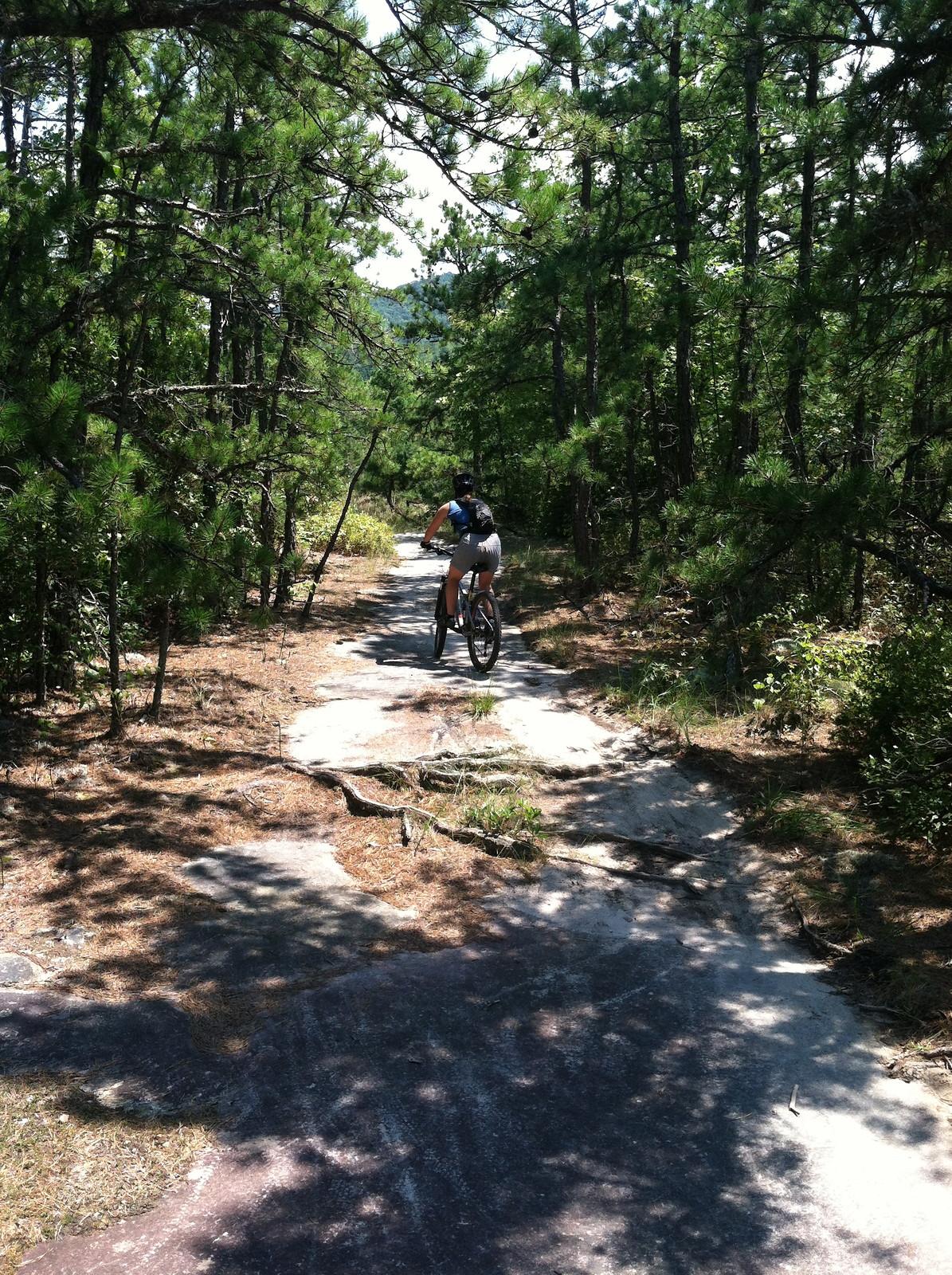Southern Fried MTB - jason.rickles.1 - Mountain Biking Pictures - Vital MTB