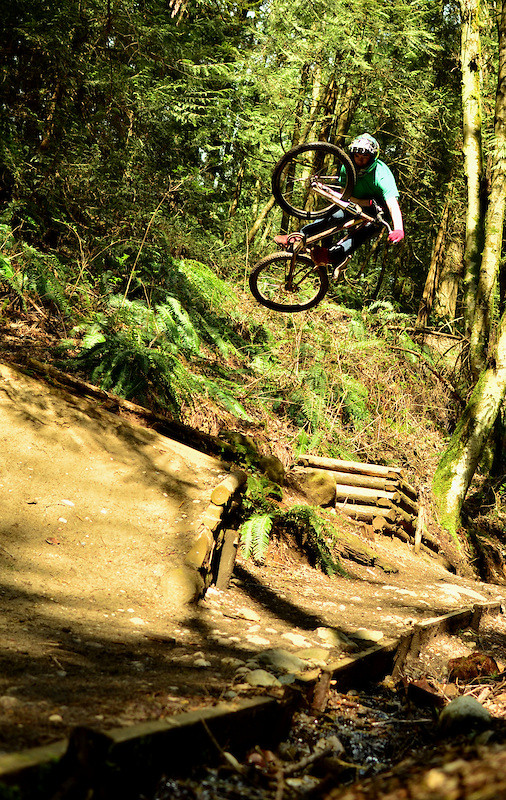 The Gully - megamichael - Mountain Biking Pictures - Vital MTB