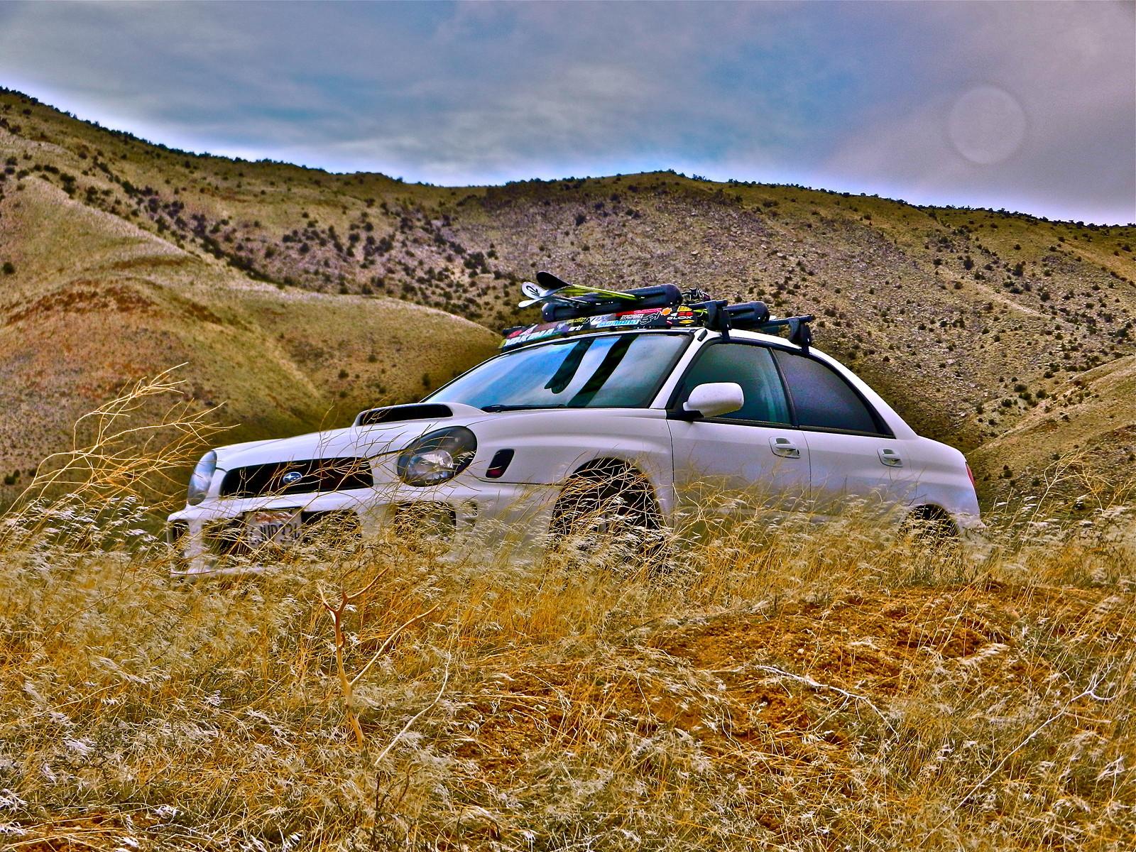 DSCN0404 - monsterrex03 - Mountain Biking Pictures - Vital MTB