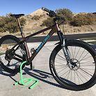 Custom Santa Cruz Chameleon