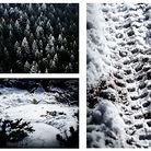 C138_winter_in_colorado_15