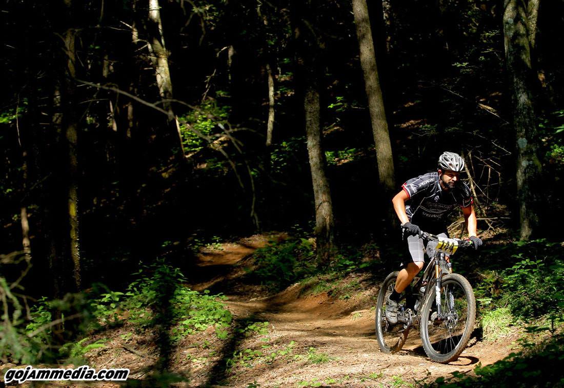 Mr. Sycamore - gojammedia - Mountain Biking Pictures - Vital MTB