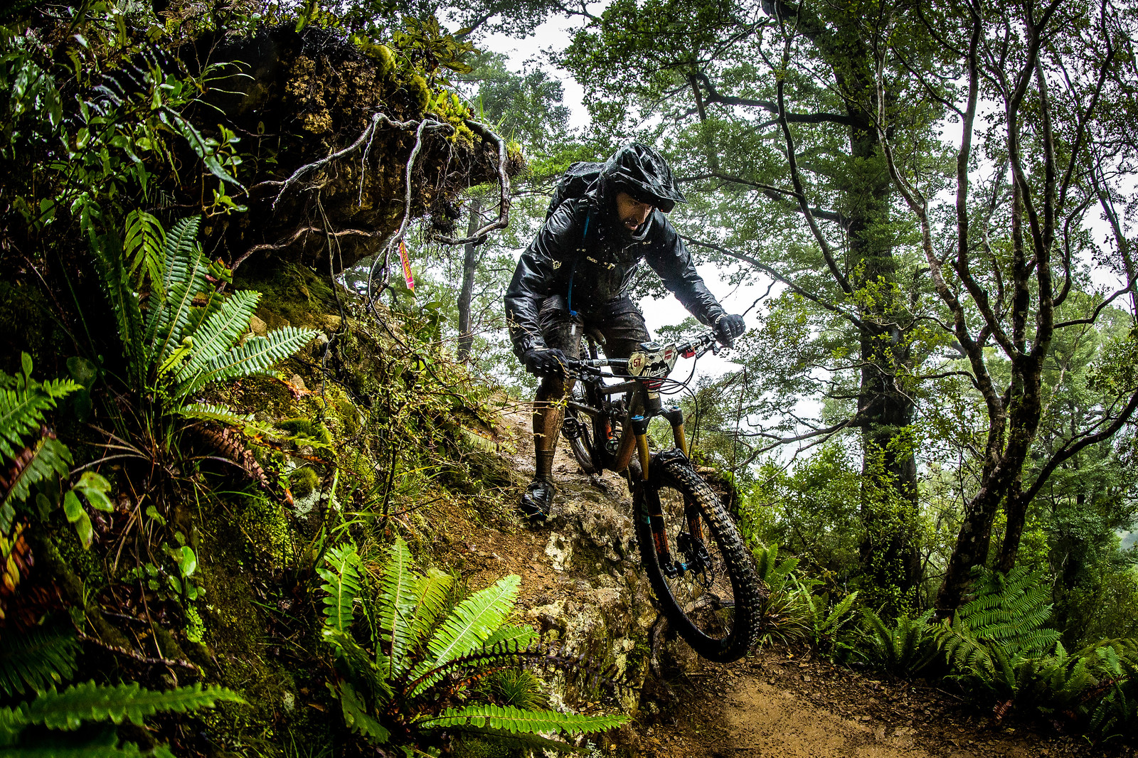 James - NZ Enduro Day 2 - Mountain Biking Pictures - Vital MTB
