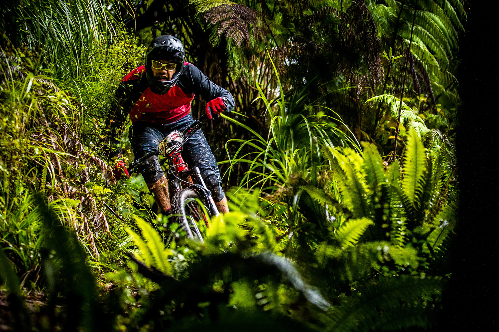 Welcome to the Jungle - NZ Enduro Day 2 - Mountain Biking Pictures - Vital MTB
