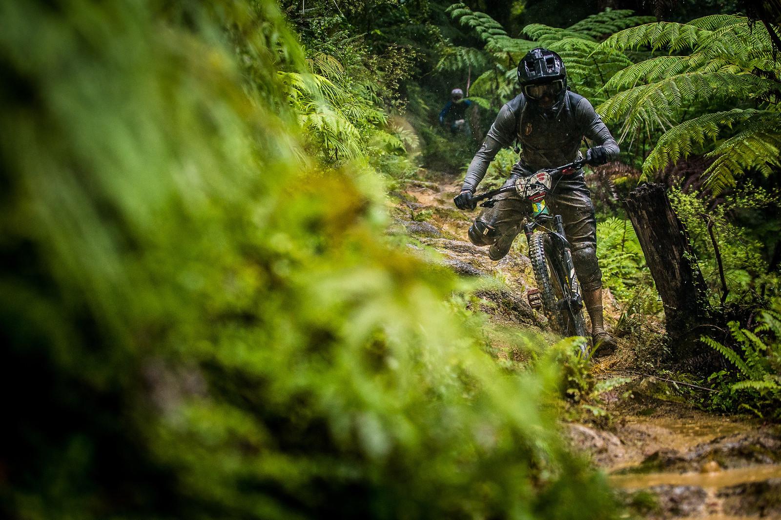 Damien Oton - NZ Enduro Day 2 - Mountain Biking Pictures - Vital MTB
