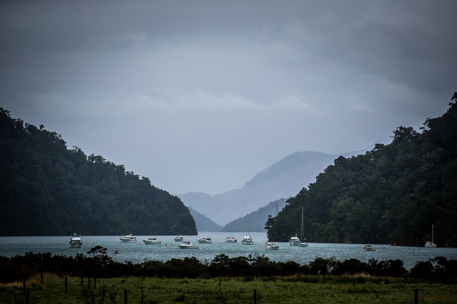 NZ Beauty - NZ Enduro Day 2 - Mountain Biking Pictures - Vital MTB
