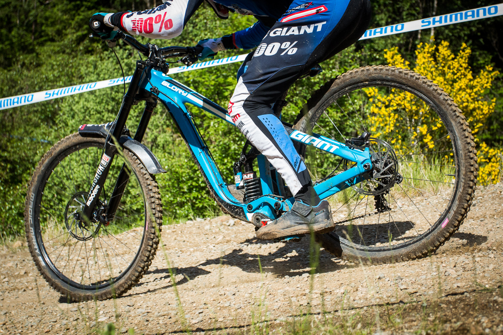 Giant Glory Advanced - G-Out Project, Fort William - Mountain Biking Pictures - Vital MTB