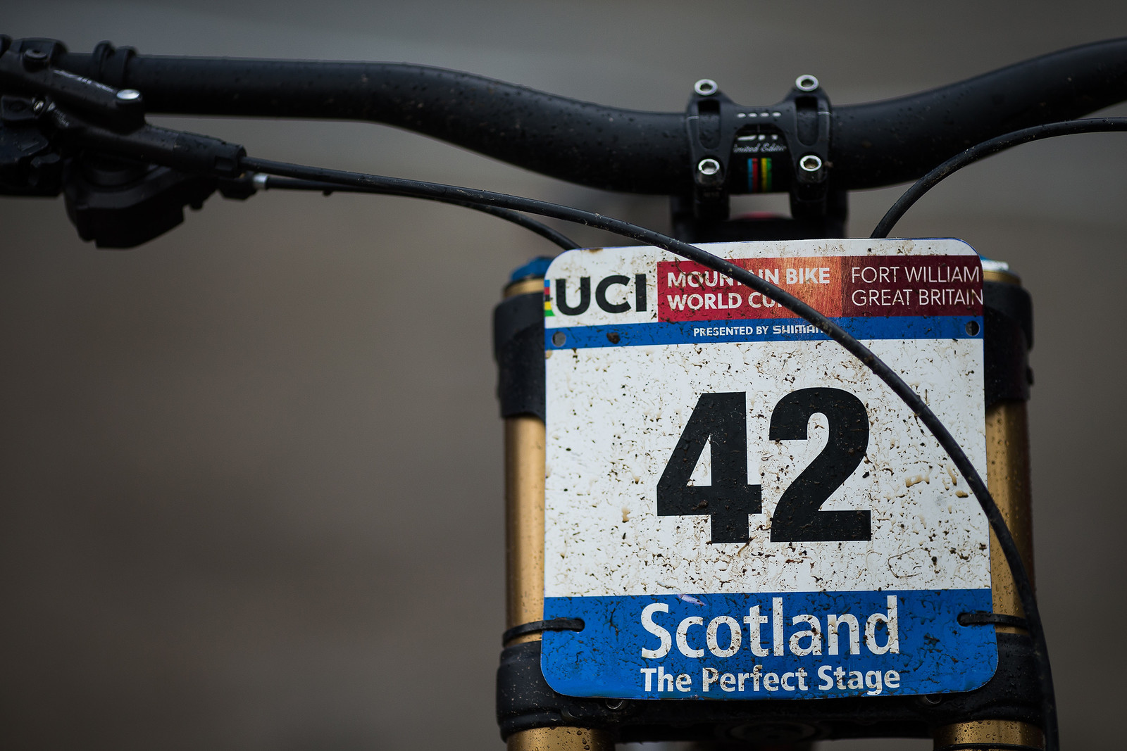 So Long #42, Hello #1 - WINNING BIKE: Greg Minnaar's Santa Cruz V10 29er - Mountain Biking Pictures - Vital MTB