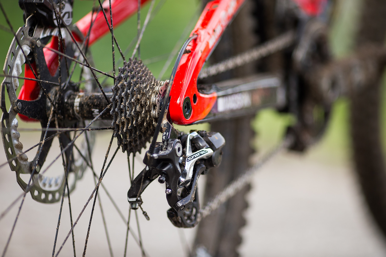 Tight Shimano Cassette Cluster - WINNING BIKE: Matt Walker's Saracen Myst - Mountain Biking Pictures - Vital MTB