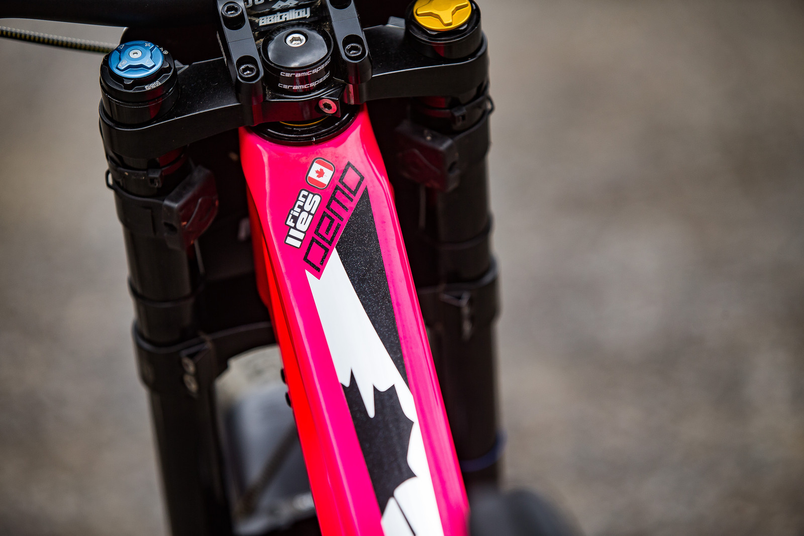 Custom Paint Job - WINNING BIKE: Finn Iles' Specialized S-Works Demo - Mountain Biking Pictures - Vital MTB