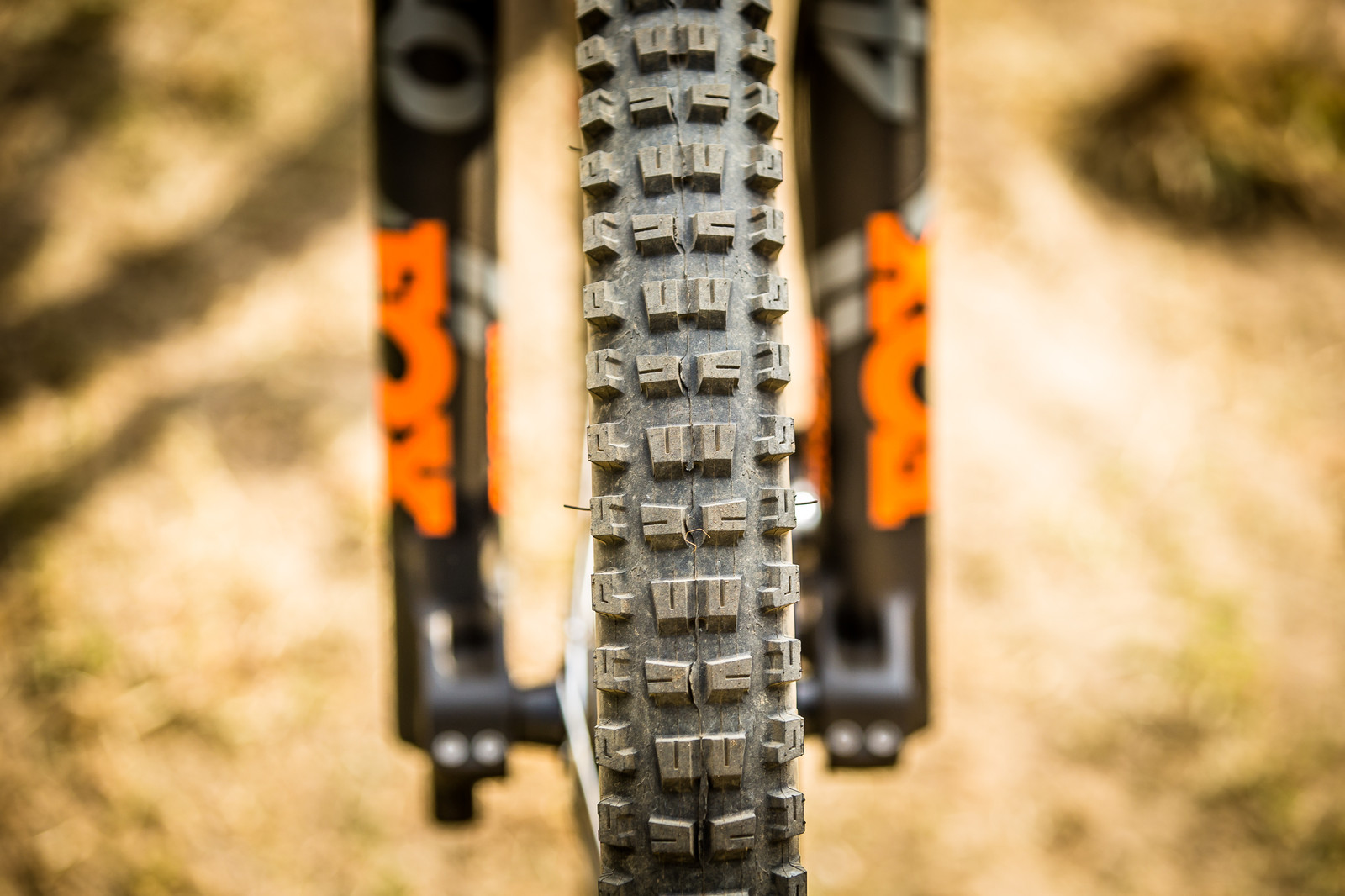Onza Aquila 2.4 Tire - WINNING BIKE: Aaron Gwin's YT TUES - Mountain Biking Pictures - Vital MTB