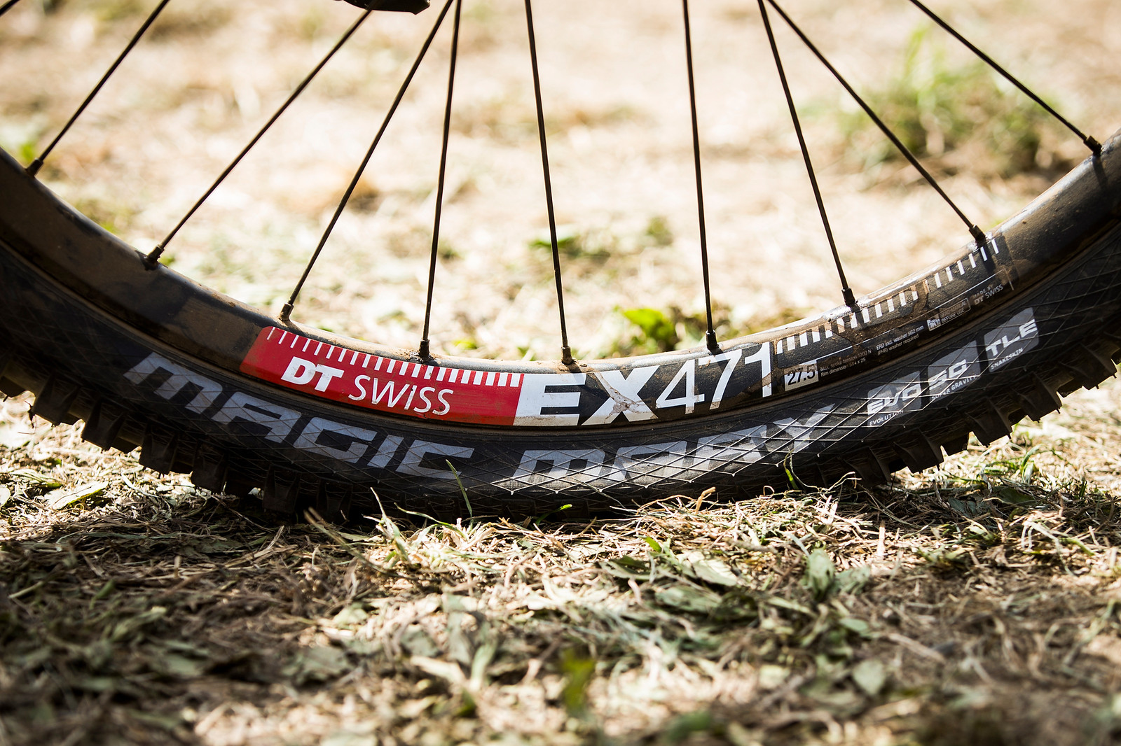 DT Swiss EX471 Wheesl and Schwalbe Magic Mary Tires - WINNING BIKE: Tahnee Seagrave's Transition TR11 - Mountain Biking Pictures - Vital MTB