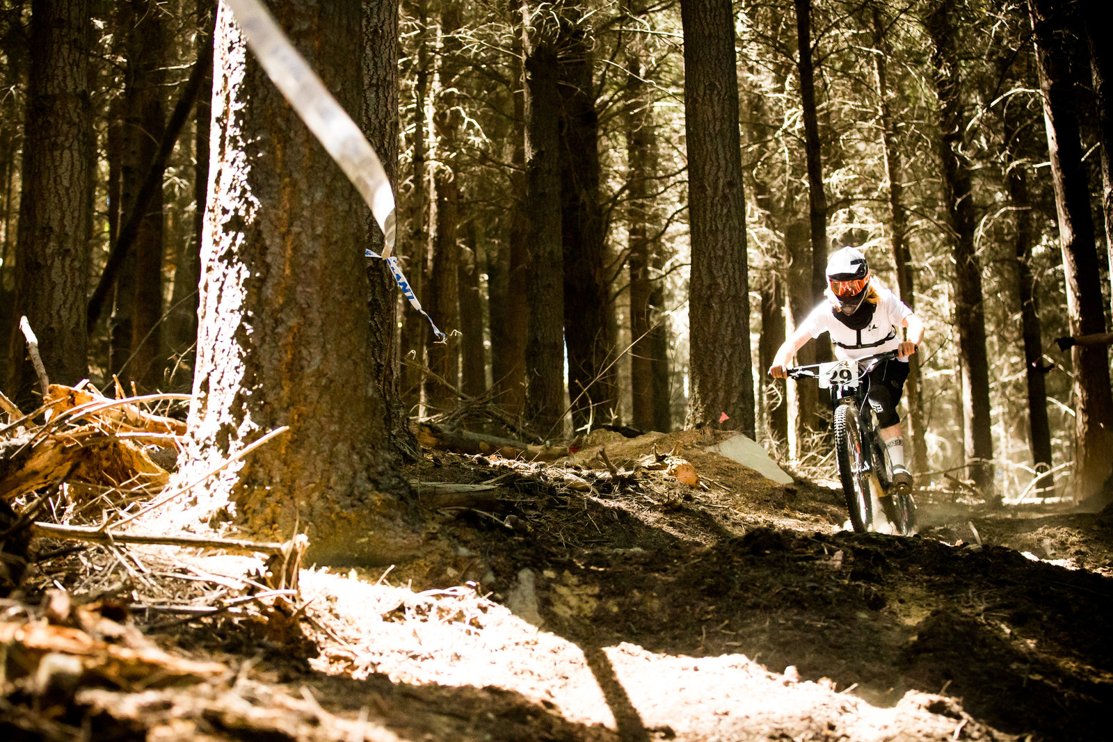 Queenstown Woods - Homegrown NZ Downhill - Vertigo Bikes Ride More DH Series Race 1 - Mountain Biking Pictures - Vital MTB