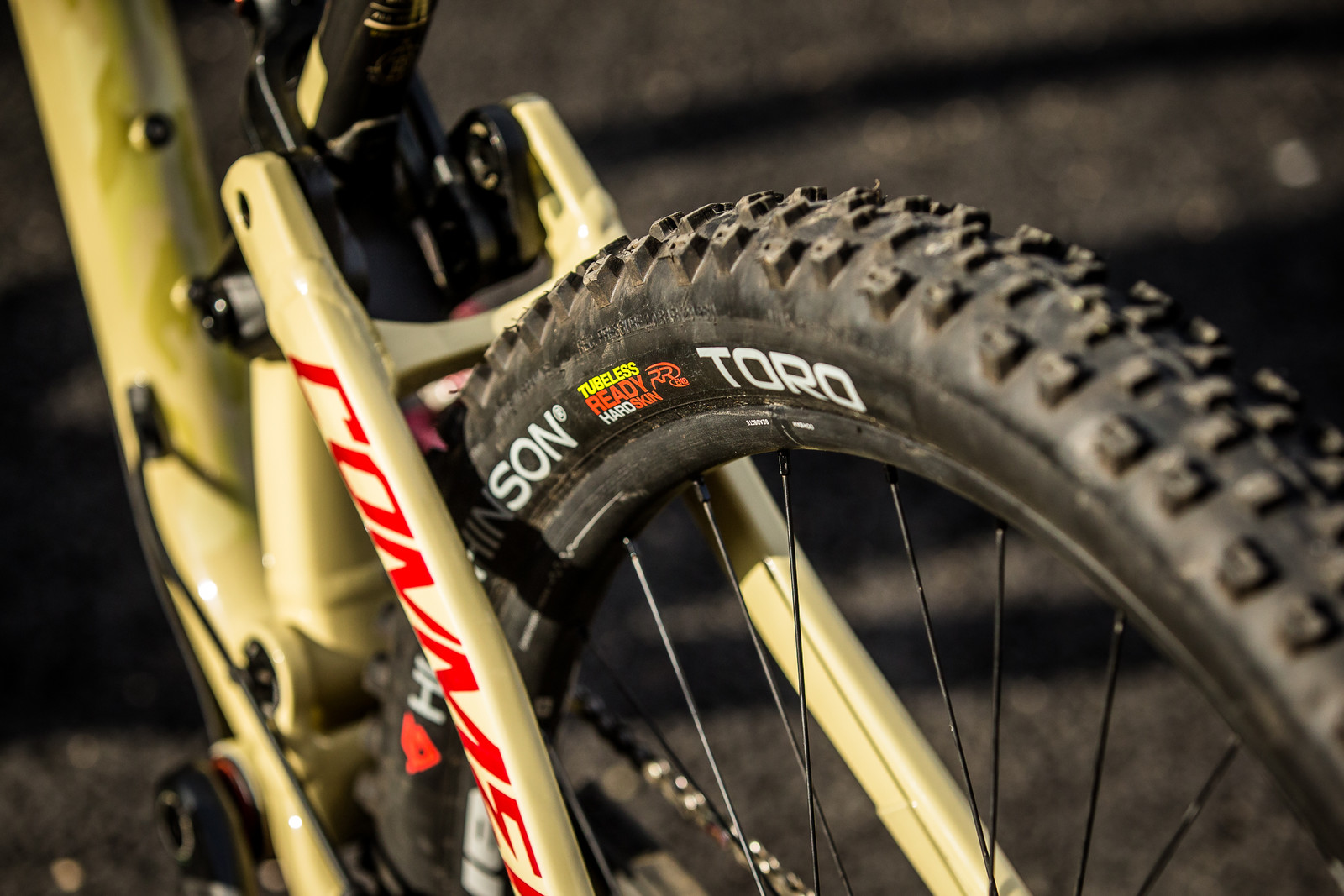 Hutchinson Toro 29 Tires - Cecile Ravanel's Commencal Meta AM 29 - Mountain Biking Pictures - Vital MTB