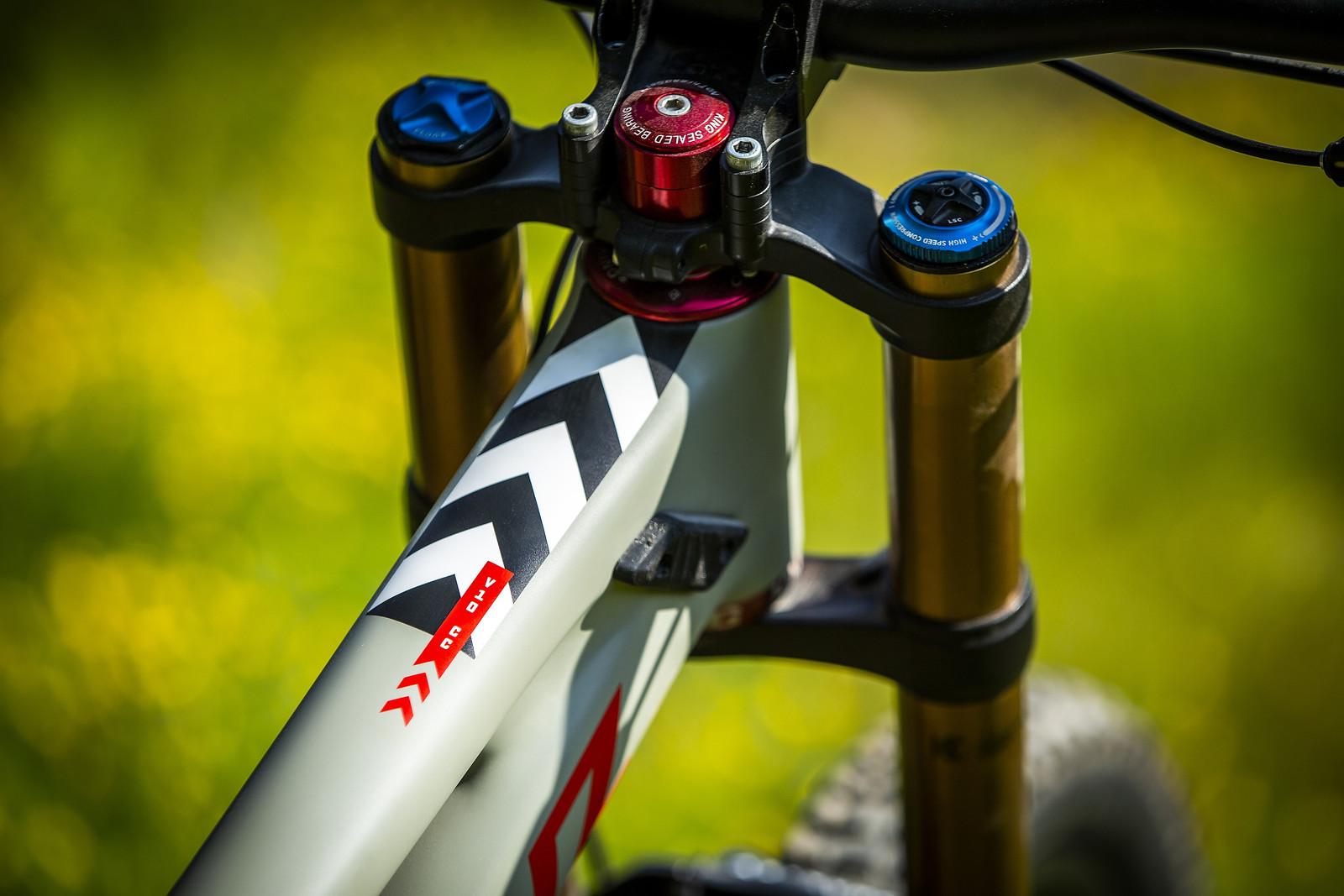 Greg Minnaar's New Santa Cruz V10 29er - Greg Minnaar's New Santa Cruz V10 29er - Mountain Biking Pictures - Vital MTB