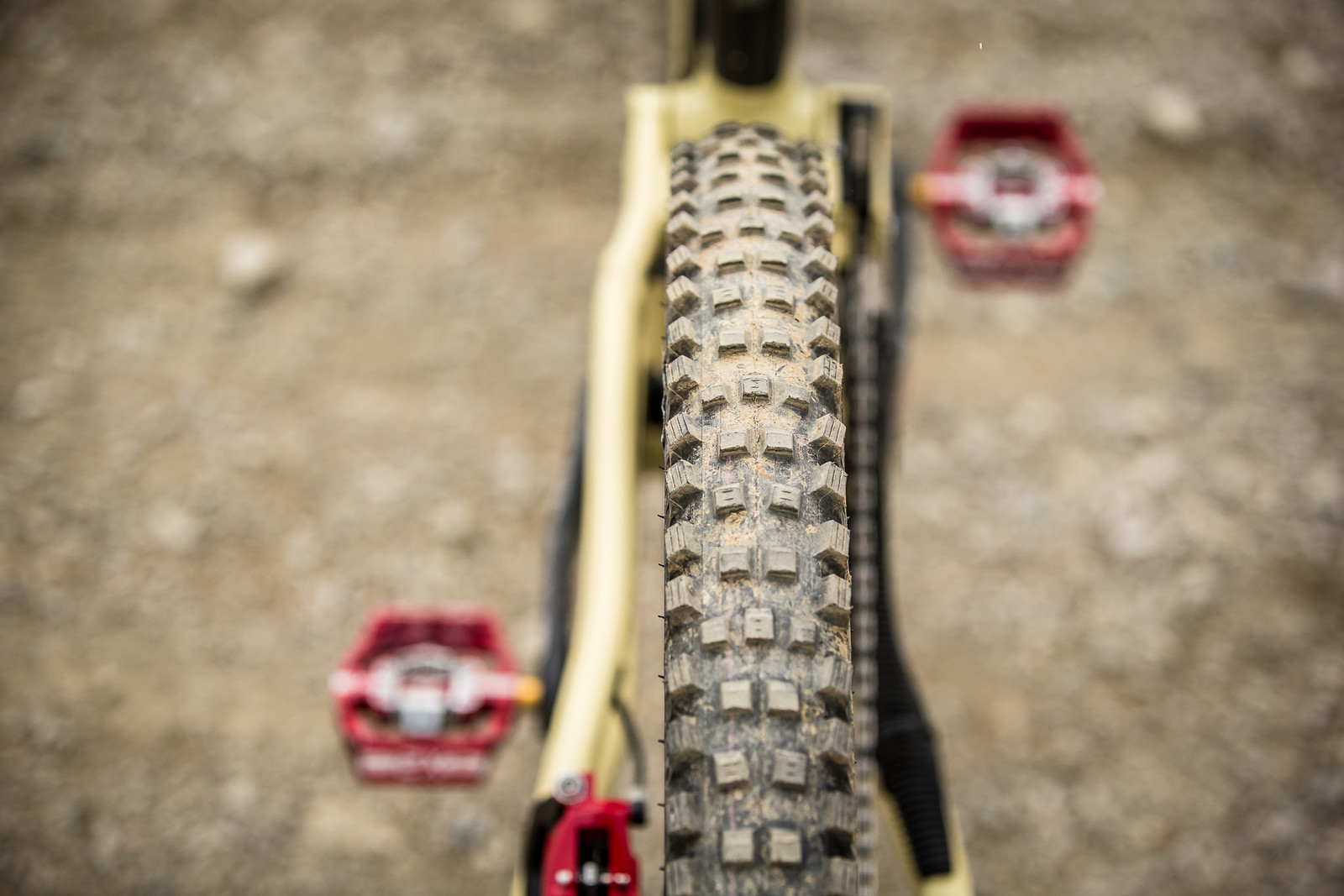 Schwalbe Magic Mary Tires - WINNING BIKE - Amaury Pierron's Commencal Supreme DH 29 - Mountain Biking Pictures - Vital MTB