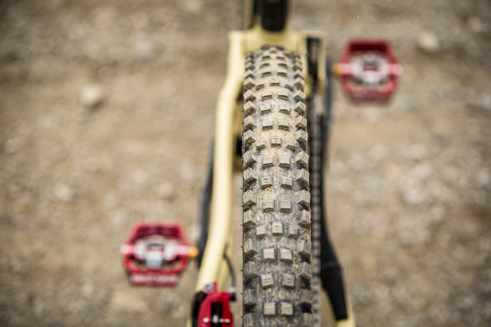 Schwalbe Magic Mary Tires - WINNING BIKE - Amaury Pierron's Commencal Supreme DH 29 - Mountain Biking Pictures - Vital MTB