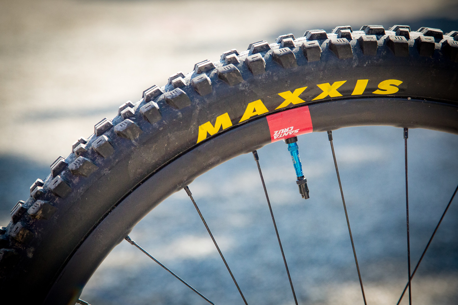 Maxxis Assegai Tires - PIT BITS - Enduro World Series, Petzen - Mountain Biking Pictures - Vital MTB