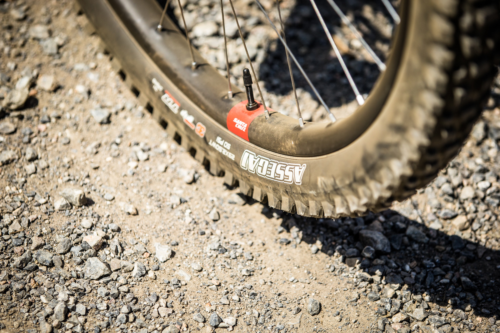 Santa Cruz Carbon Wheels - WINNING BIKE - Loris Vergier's Santa Cruz V10cc 29 - Mountain Biking Pictures - Vital MTB