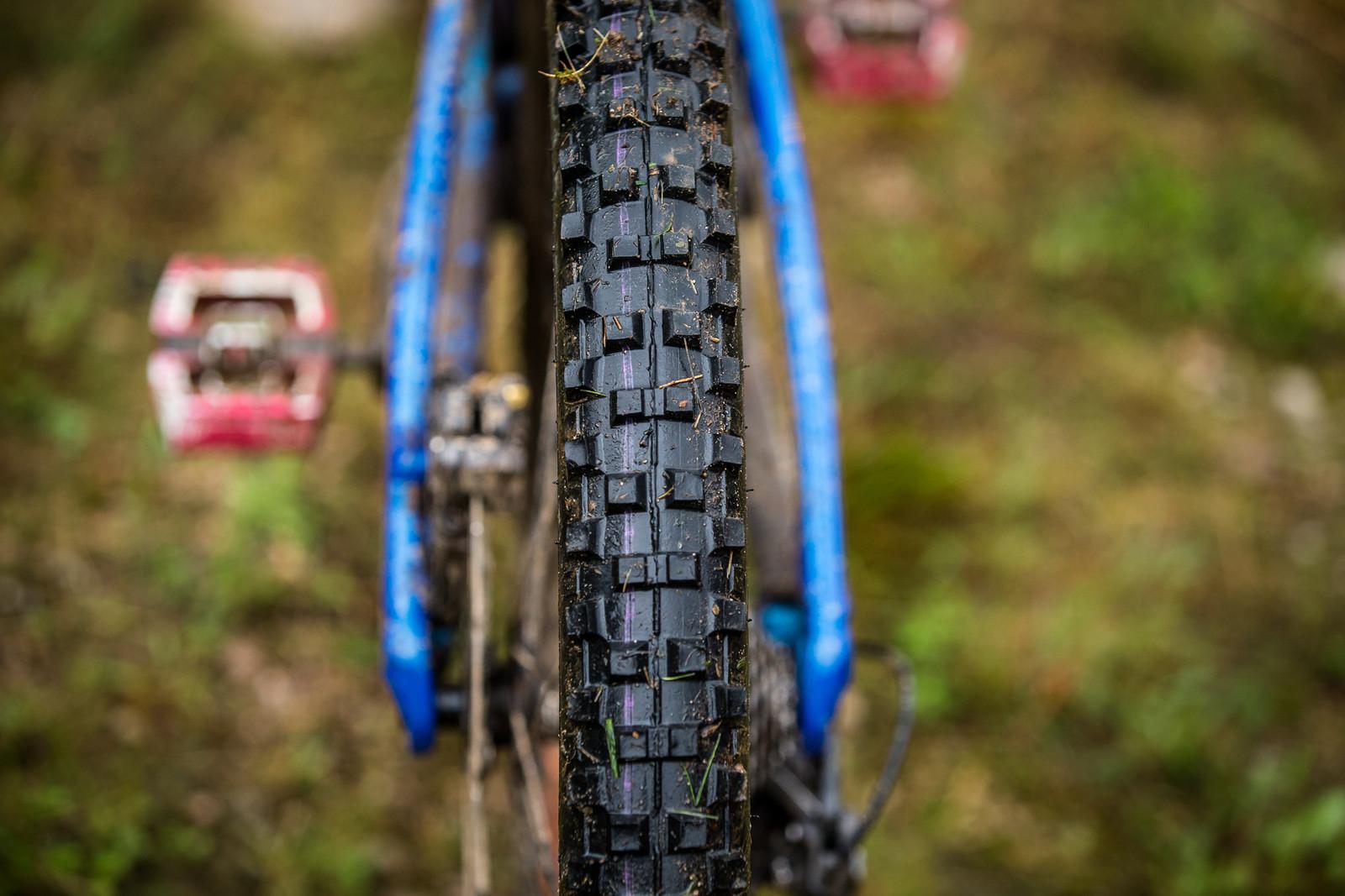 Cut Schwalbe Dirty Dan - WINNING BIKE - Martin Maes' GT Fury - Mountain Biking Pictures - Vital MTB