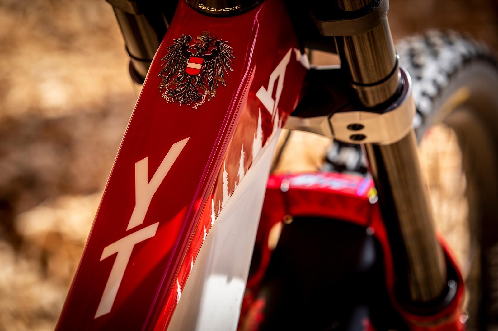 National Pride - WORLD CHAMPS BIKE - Vali Holl's YT TUES - Mountain Biking Pictures - Vital MTB