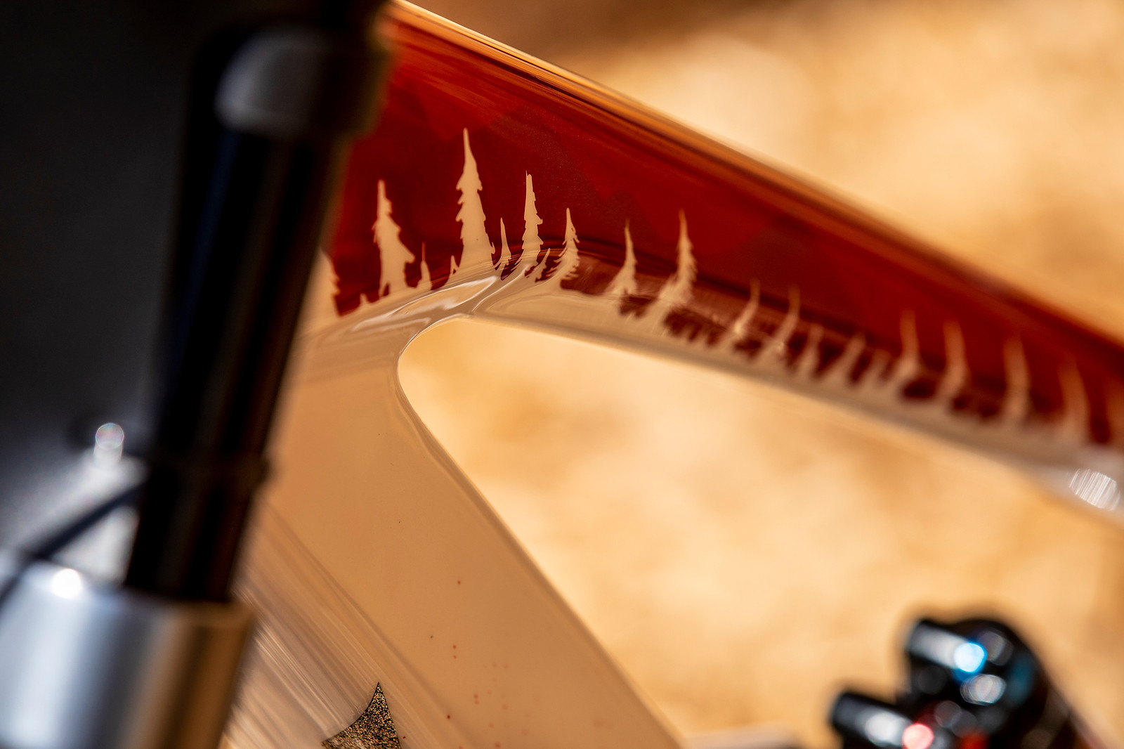 The Deets - WORLD CHAMPS BIKE - Vali Holl's YT TUES - Mountain Biking Pictures - Vital MTB