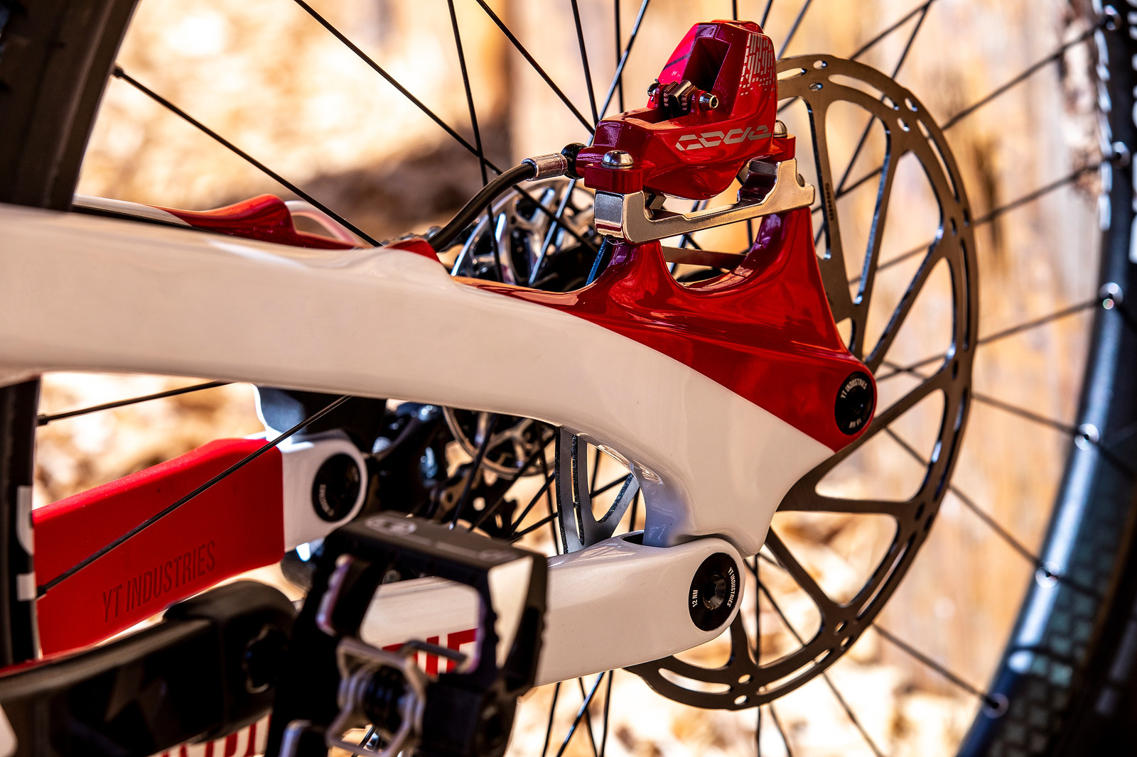 Red CODES - WORLD CHAMPS BIKE - Vali Holl's YT TUES - Mountain Biking Pictures - Vital MTB