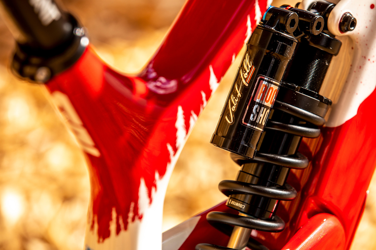 Put a Name on it - WORLD CHAMPS BIKE - Vali Holl's YT TUES - Mountain Biking Pictures - Vital MTB