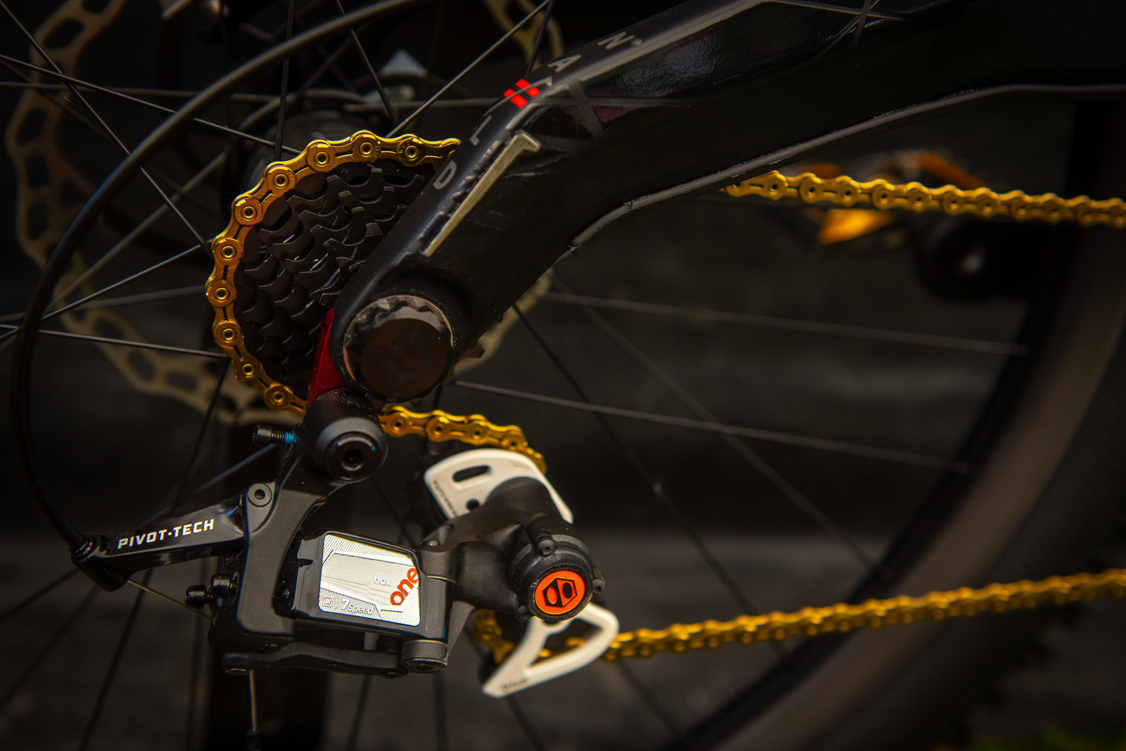 BOX Drivetrain - WORLD CHAMPS BIKES - Mick & Tracey Hannah's Polygons - Mountain Biking Pictures - Vital MTB