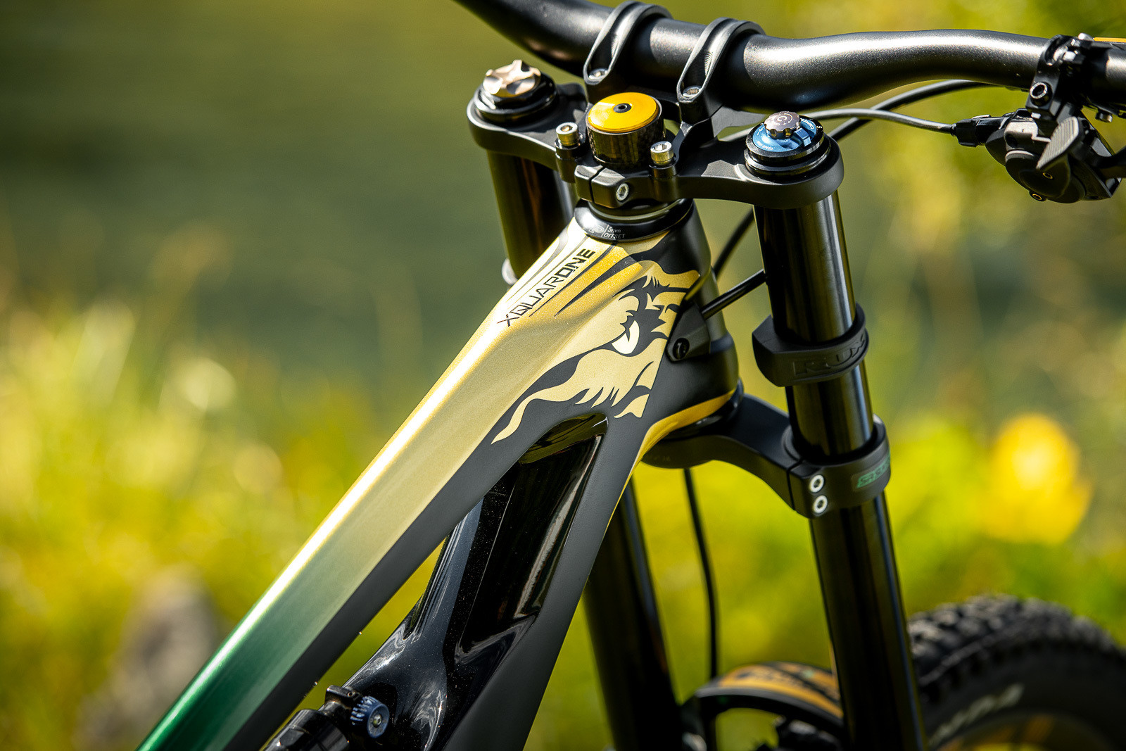 So Sick - WORLD CHAMPS BIKES - Mick & Tracey Hannah's Polygons - Mountain Biking Pictures - Vital MTB