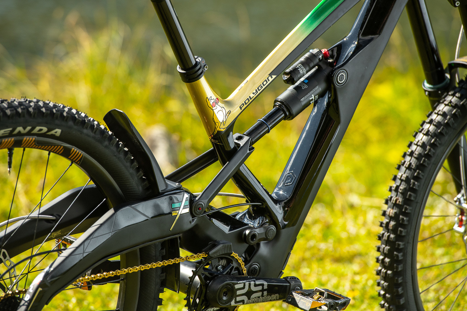 Matte Gloss Combo - WORLD CHAMPS BIKES - Mick & Tracey Hannah's Polygons - Mountain Biking Pictures - Vital MTB
