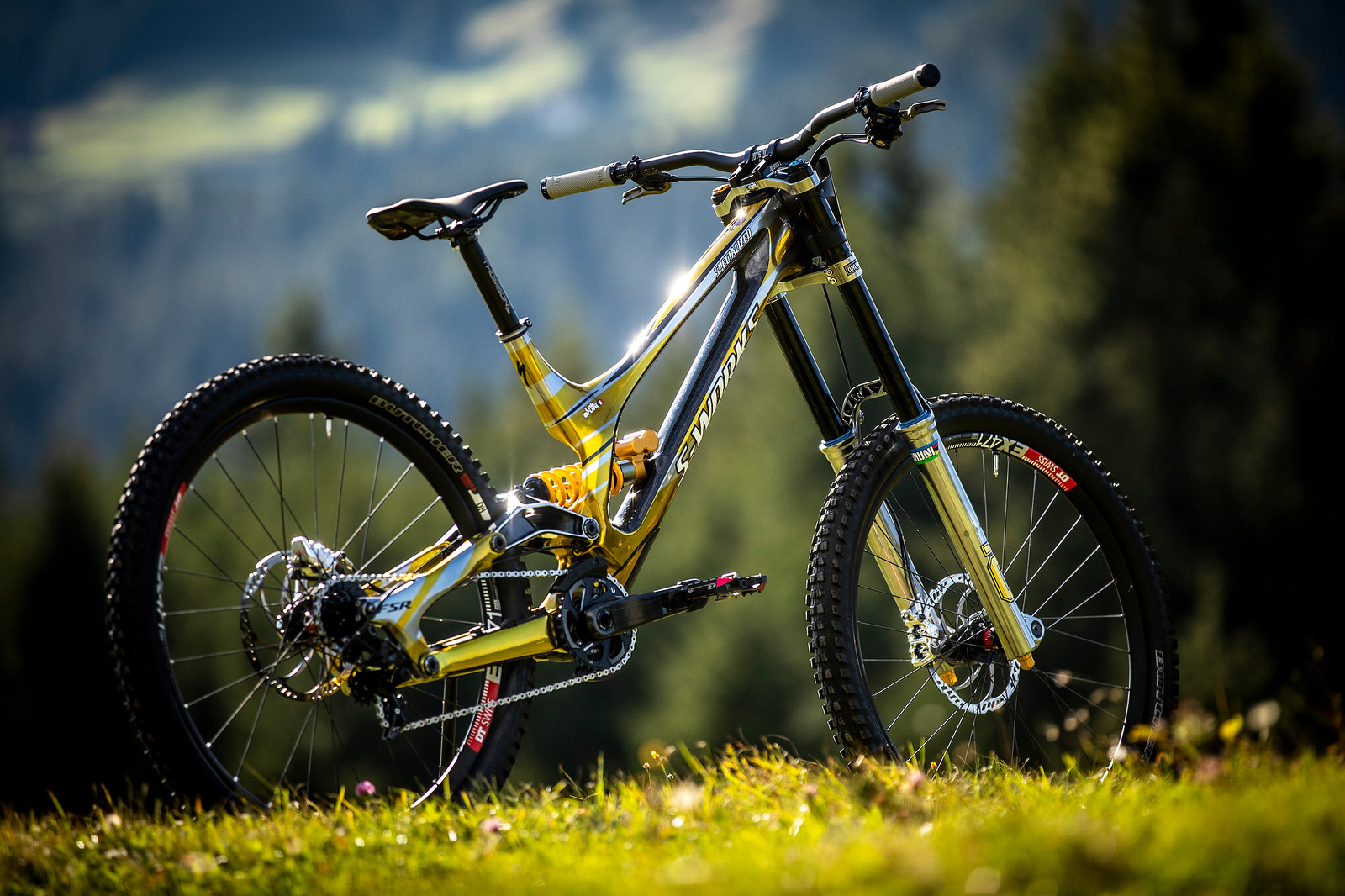 Mr. Sparkle - WORLD CHAMPS BIKE - Loic Bruni's Specialized Demo - Mountain Biking Pictures - Vital MTB