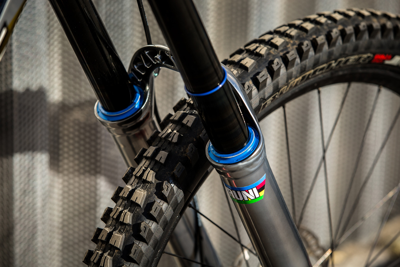 The Blue Details are Dope - WORLD CHAMPS BIKE - Loic Bruni's Specialized Demo - Mountain Biking Pictures - Vital MTB