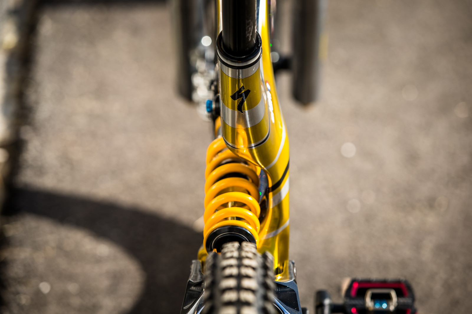 Makes You Want to Wiggle, Doesn't It? - WORLD CHAMPS BIKE - Loic Bruni's Specialized Demo - Mountain Biking Pictures - Vital MTB