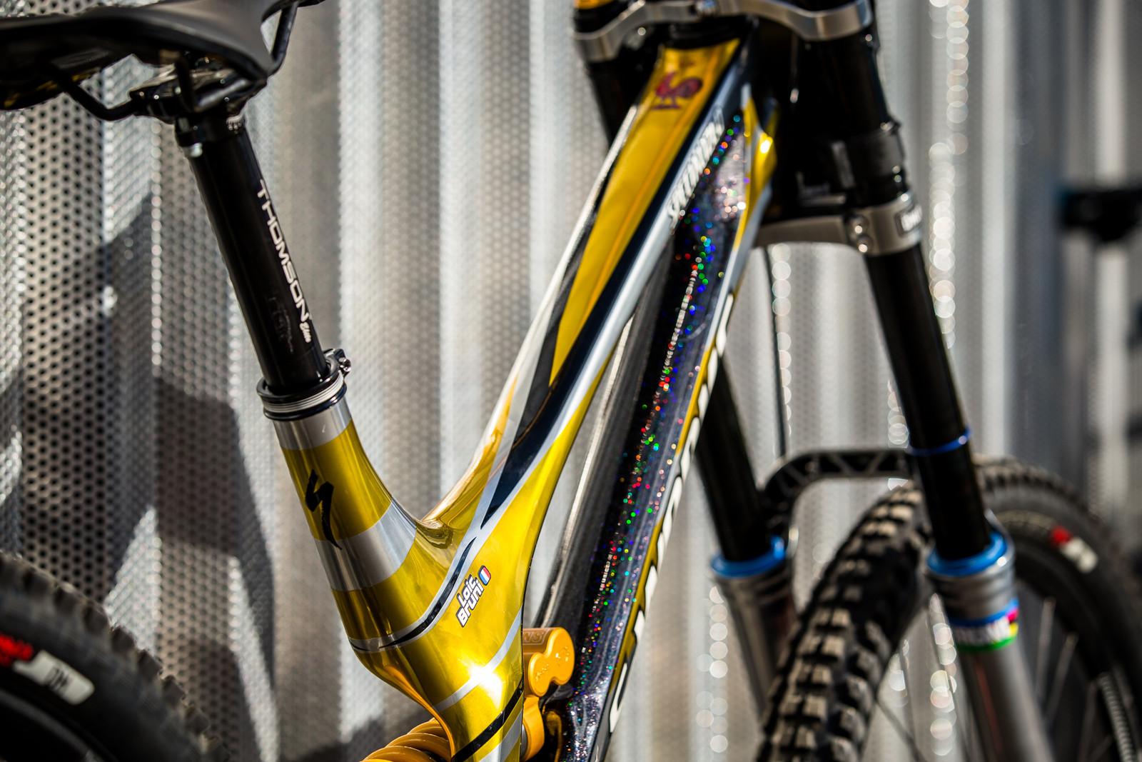 Sleek - WORLD CHAMPS BIKE - Loic Bruni's Specialized Demo - Mountain Biking Pictures - Vital MTB
