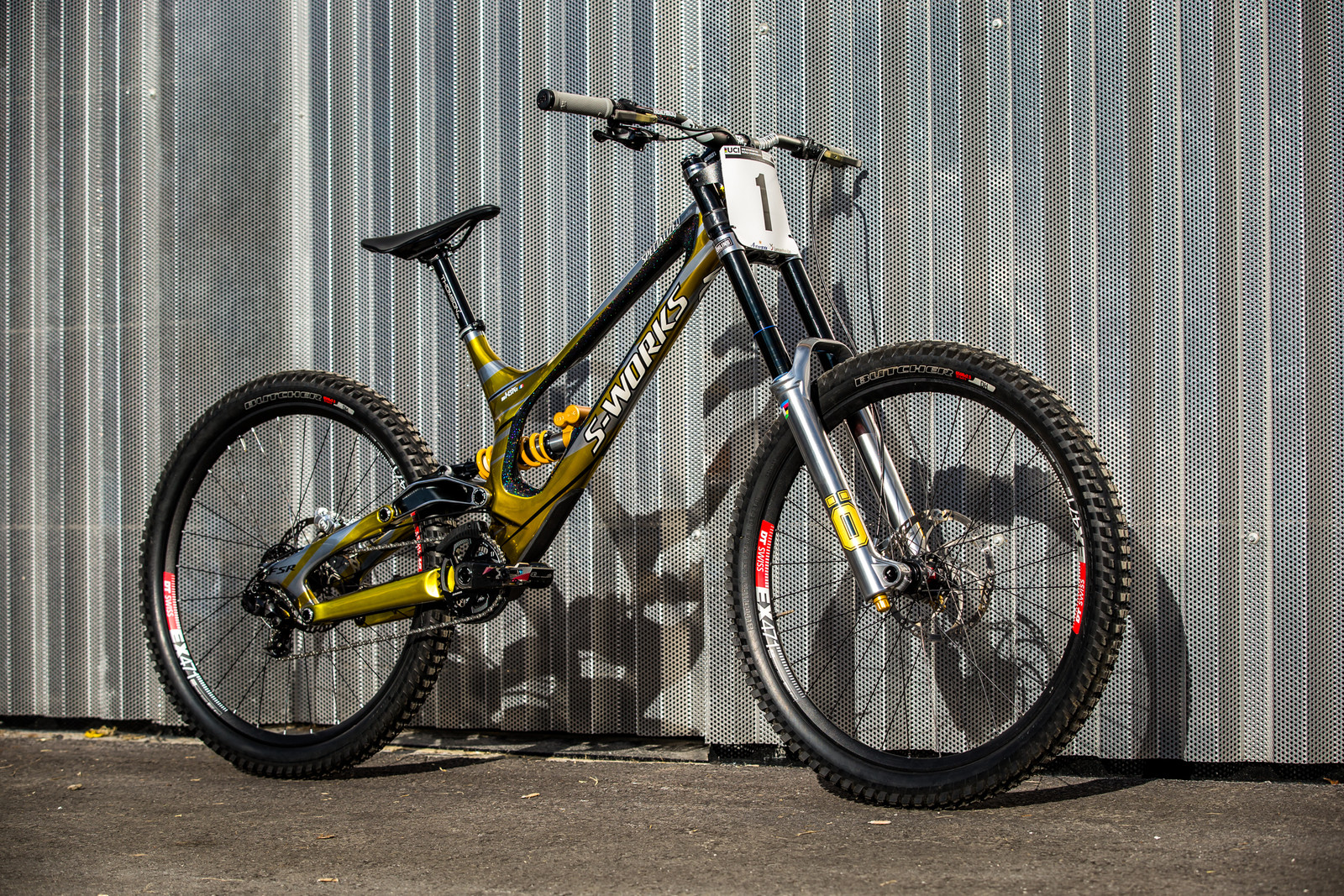 SO SICK. - WORLD CHAMPS BIKE - Loic Bruni's Specialized Demo - Mountain Biking Pictures - Vital MTB
