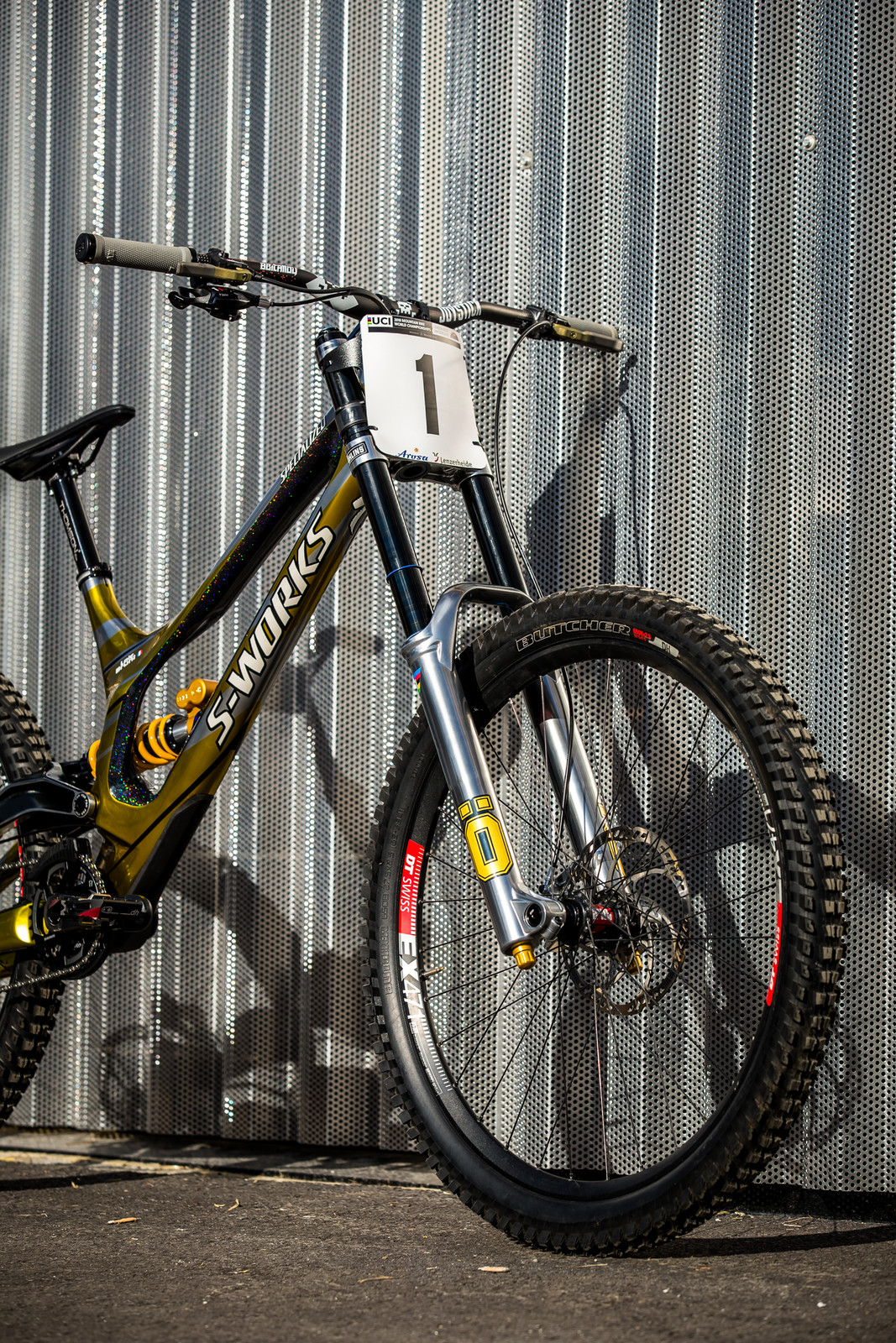 Silver Surfer Wrapped in Gold - WORLD CHAMPS BIKE - Loic Bruni's Specialized Demo - Mountain Biking Pictures - Vital MTB