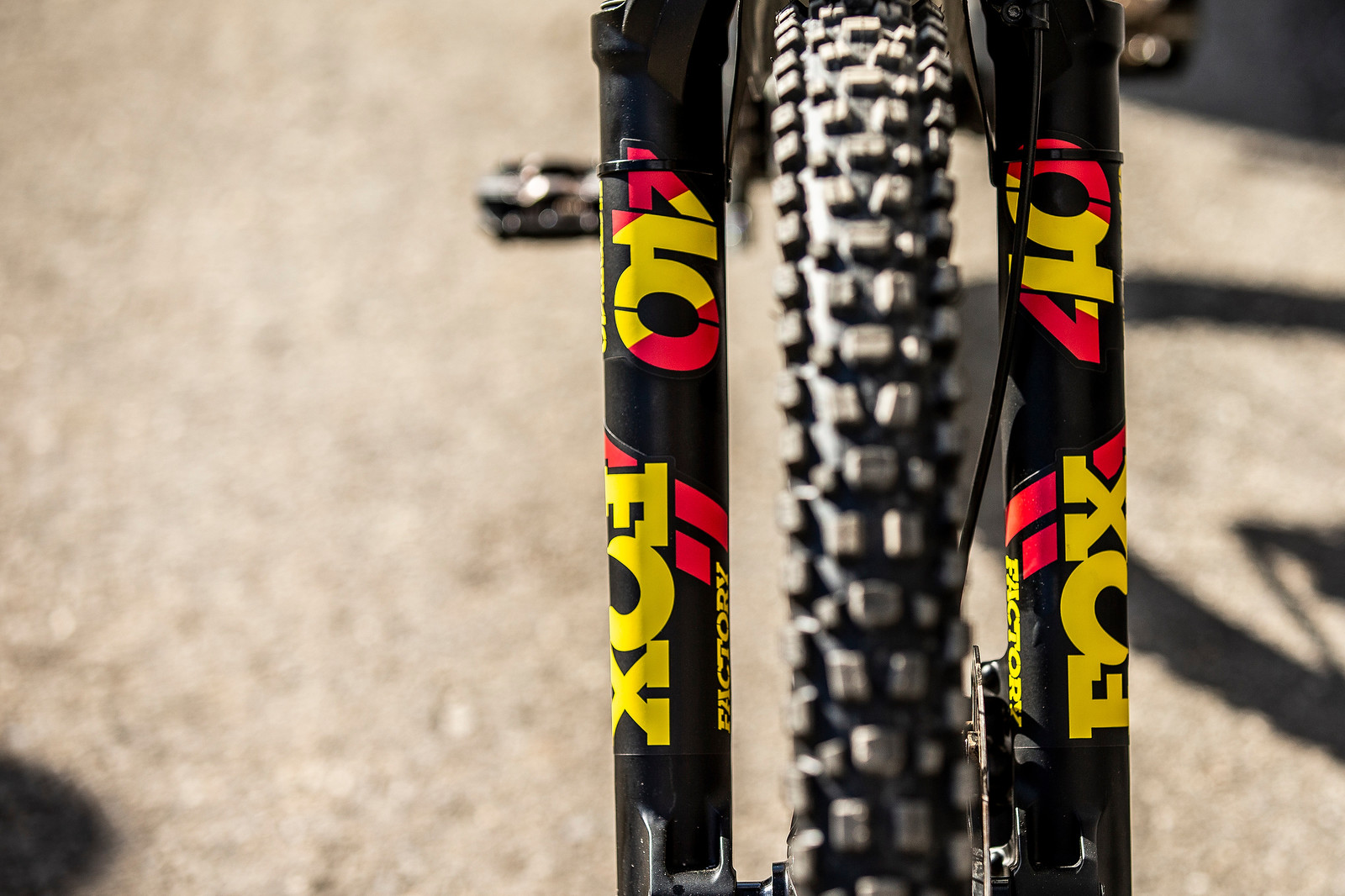 The Decals - WORLD CHAMPS BIKE - Alex Marin's Saracen Myst - Mountain Biking Pictures - Vital MTB
