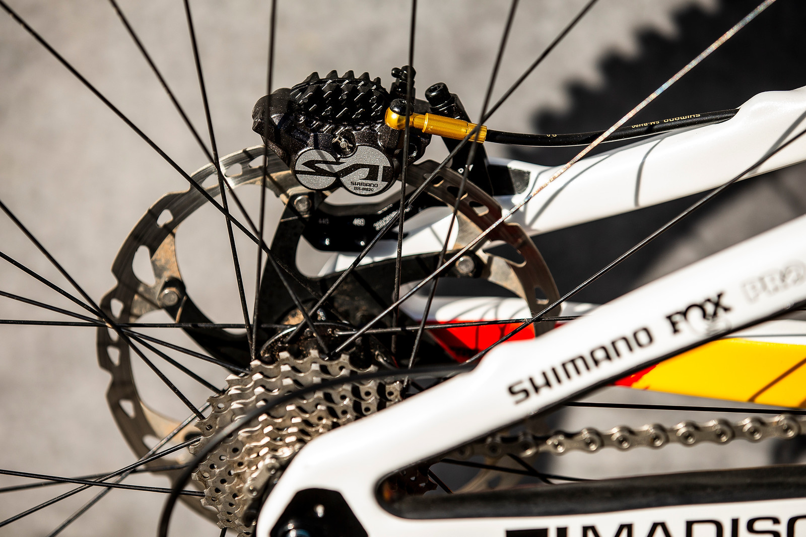 Saint Brakes - WORLD CHAMPS BIKE - Alex Marin's Saracen Myst - Mountain Biking Pictures - Vital MTB