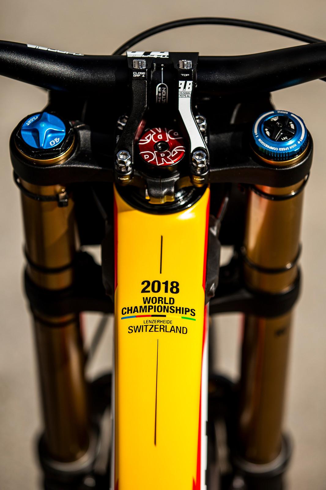 Little Touches - WORLD CHAMPS BIKE - Alex Marin's Saracen Myst - Mountain Biking Pictures - Vital MTB