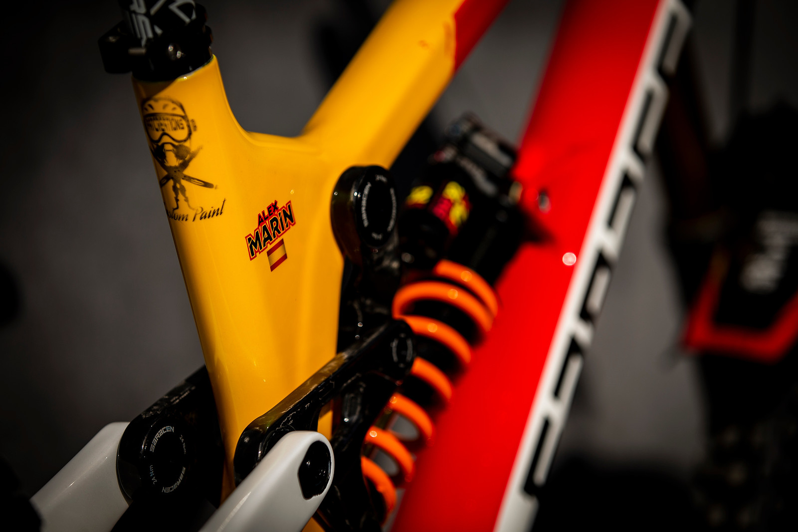 Sunny Goodness - WORLD CHAMPS BIKE - Alex Marin's Saracen Myst - Mountain Biking Pictures - Vital MTB