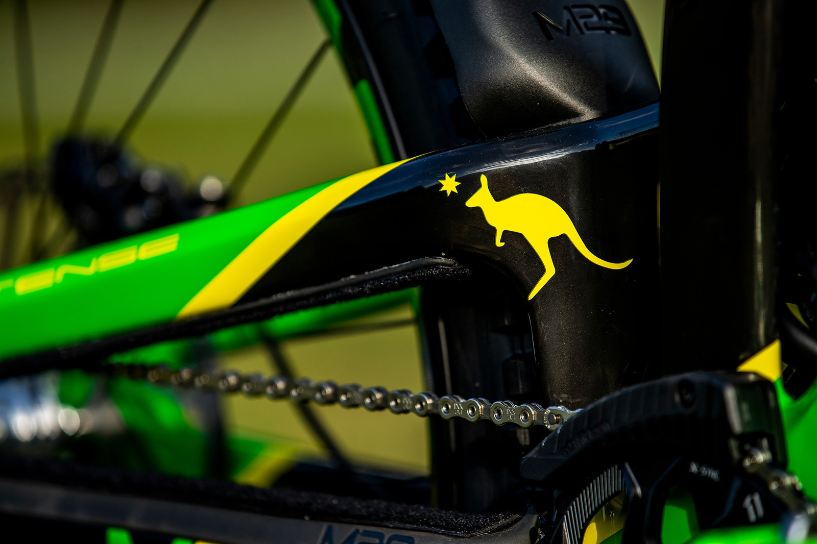Roo Power - WORLD CHAMPS BIKE - Jack Moir's Intense M29 - Mountain Biking Pictures - Vital MTB